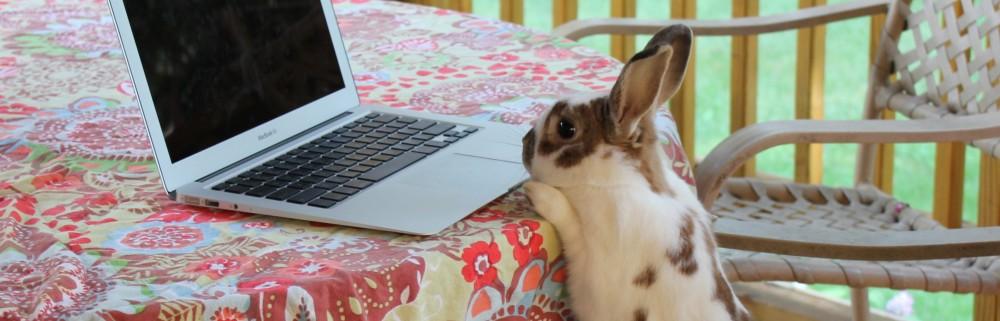 Ask Writer Rabbit